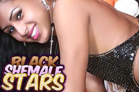 BlackShemaleStars